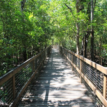 Boardwalks on the Marddja botanical walk