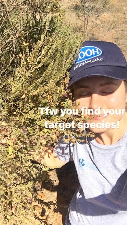 The joy of finding my target species!