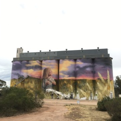 These huge silos in Kimba, SA had been painted with a beautiful mural