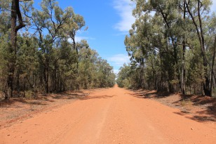 Kicking up a lot of red soil Pilliga Forest Way